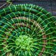 Плетение и вязание из хвои: вы не поверите, но это возможно!
