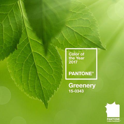 Институт Pantone объявил главный цвет 2017 года!