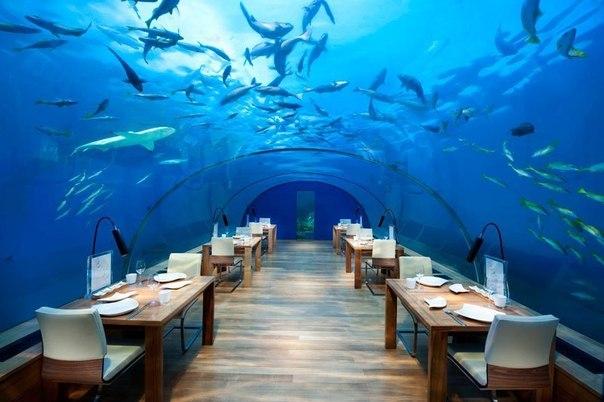 Ресторан-бассейн