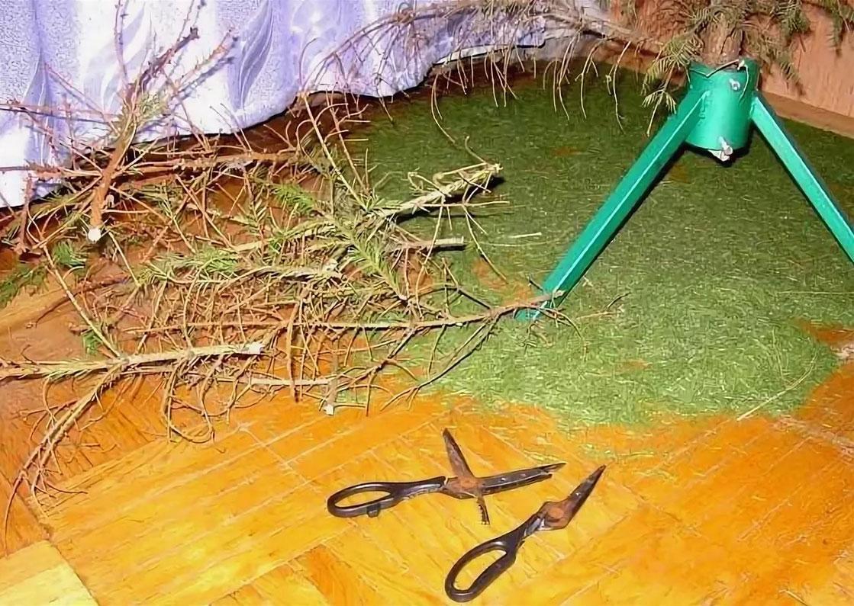 Как убрать живую новогоднюю ёлку с умом и без мусора: 6 важных советов