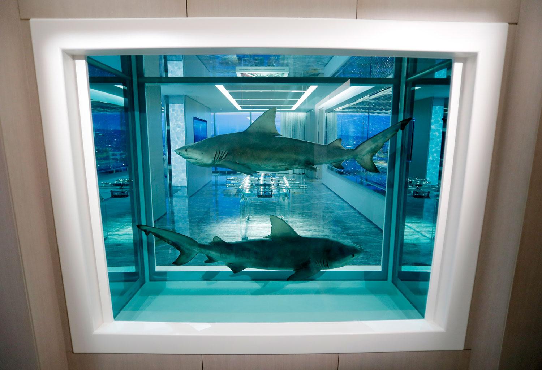 Акулы и таблетки: как выглядит гостиничный номер за $100 000 в сутки
