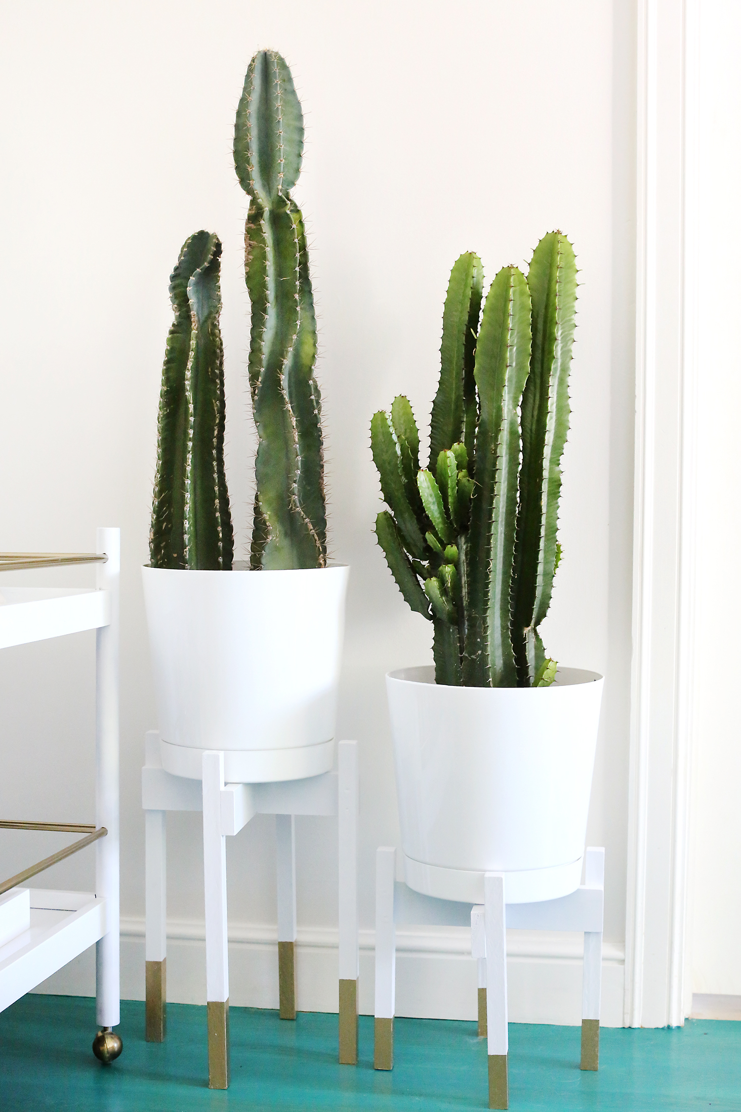 Подставка с золотыми ножками под комнатные растения своими руками